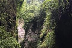 Wanderung_Barranco del agua_La Palma